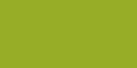 Option 5 - Kiwi