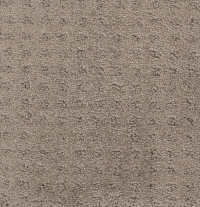 Carpet - Linen